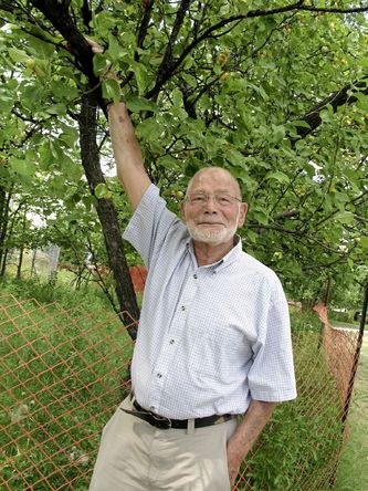 Yude Henteleff prepares to pick a crab apple from a tree planted by his grandfather 75 years ago at the site of his family's former homestead that is now Henteleff Park. Image by Simon Fuller